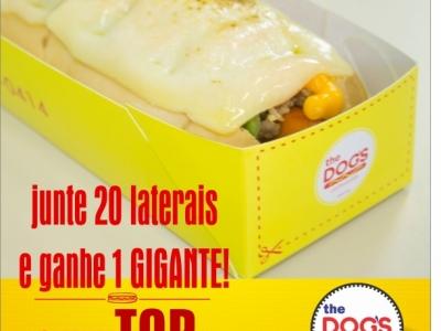 VENDO FRANQUIA ESPECIALIZADA EM HOT DOG - MARCA PRÓPRIA