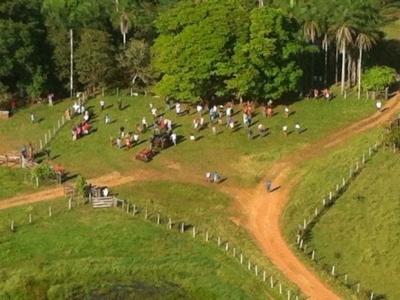 VENDO FAZENDA 7.830 HÁ . SÃO BENEDITO DO RIO PRETO-MARANHÃO