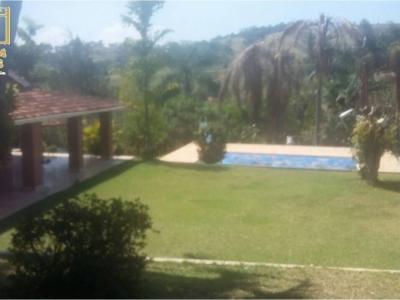 Vendo Chácara com pomar e piscina