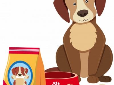 Pet Shop - Passo o Ponto