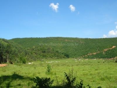 Fazenda em Juiz de Fora  - 357 hectares