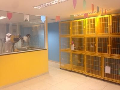 Vendo Pet Shop Recreio dos Bandeirantes