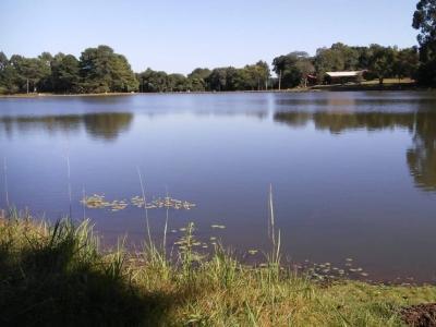 Venda e Aluguel de ponto para Pesque e Pague