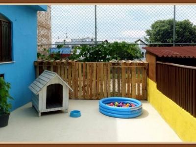 Oportunidade vendo lindo Hotel e Creche para Cães.