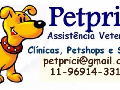 A primeira franquia de socialização em veterinária do Brasil
